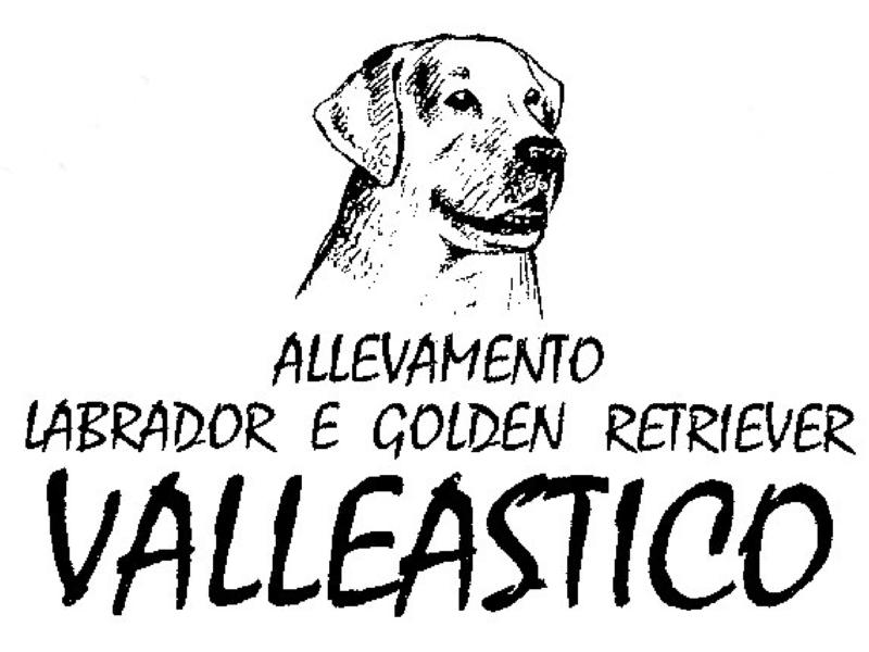 ALLEVAMENTO VALLEASTICO SU RADIO NEWS 24